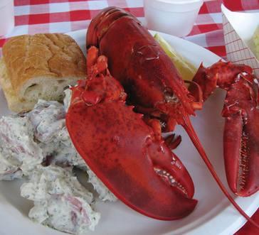 Steamed Lobster image