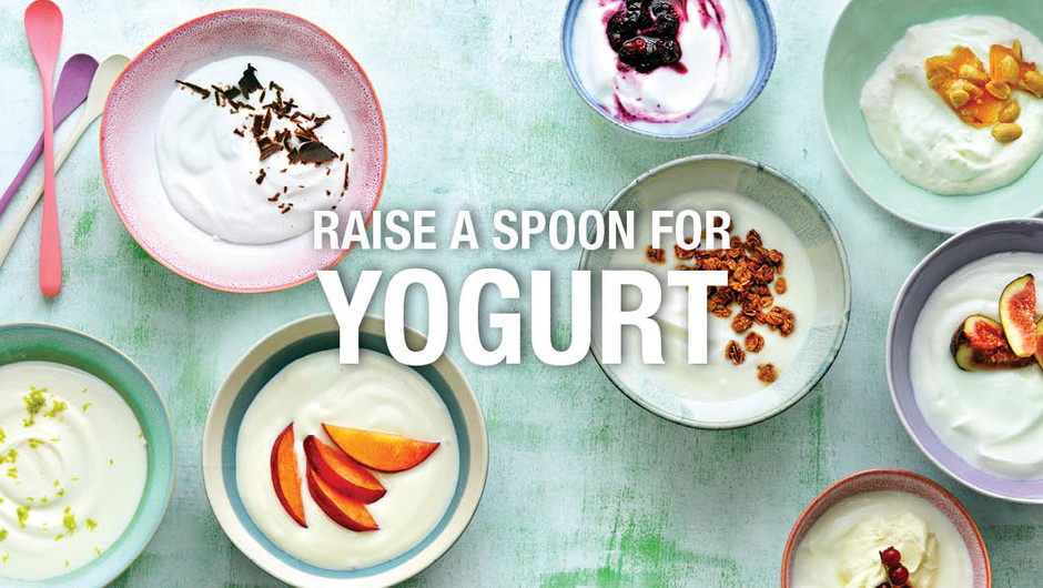 Raise a Spoon to Yogurt image