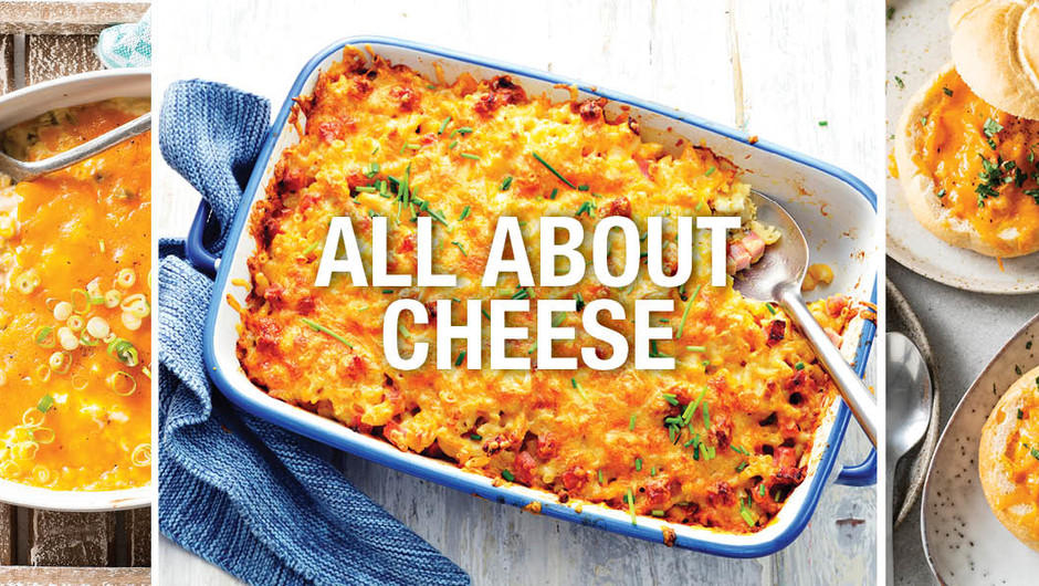 All About Cheese image