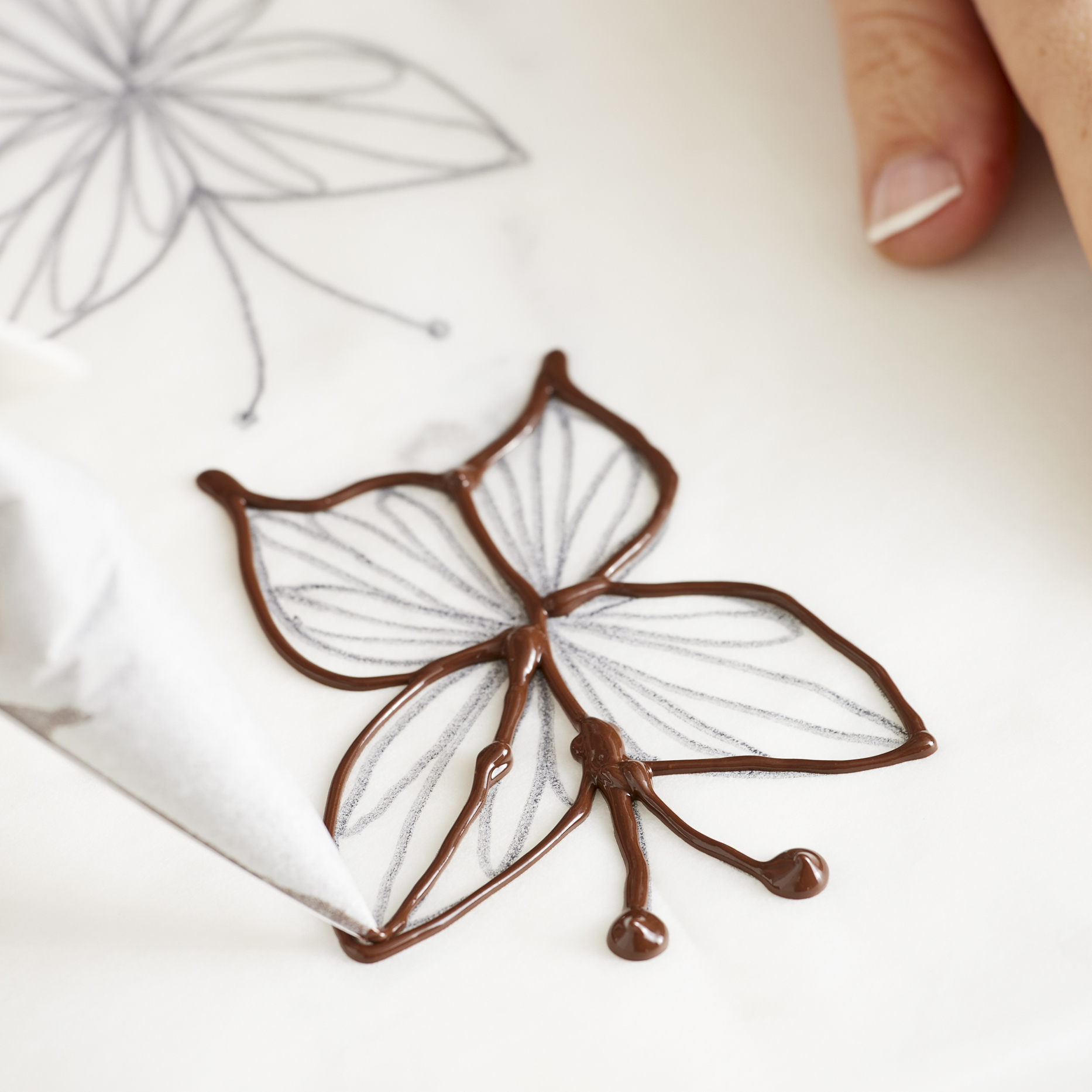 Pipe on the chocolate after drawing your butterflies