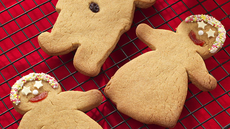 flora-gingerbread-people-biscuits-767x431